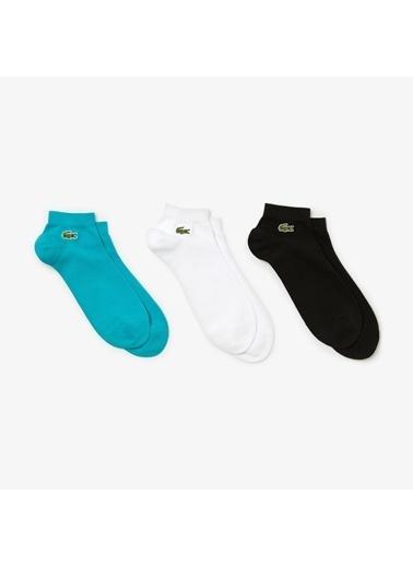 Lacoste 3'lü Çorap Renkli
